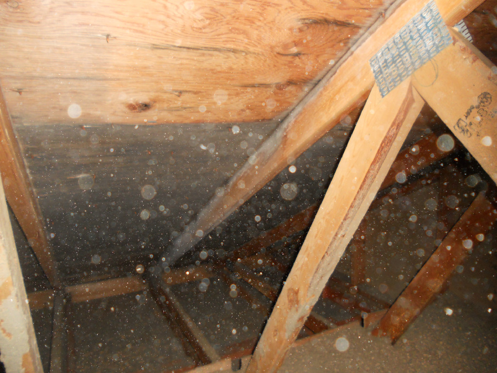 Indoor Air Quality Testing Amp Mold Prevention Fargo Nd